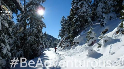 Active Snow Hike Παρνασσός: Κελάρια-Λιβάδι