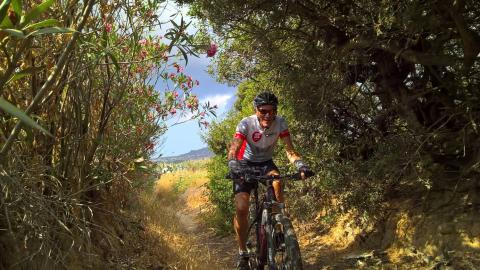 Naxos Trails.jpg bike tours.jpg2