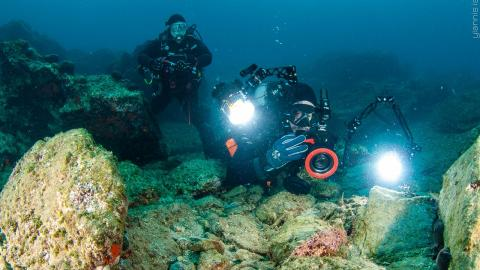 Aqualized Dive Adventures καταδυσεια athens