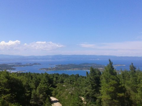 green oliver hiking trekking chalkidiki sithonia greece χαλκιδικη πεζοπορια ελλαδα