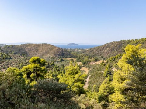 green oliver hiking trekking neos marmaras chalkidiki greece πεζοπορια χαλκιδικι ελλαδα 2