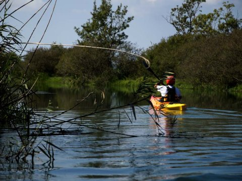 Louros River, Κayaking – Βirdwatching into the wild greece preveza.jpg4