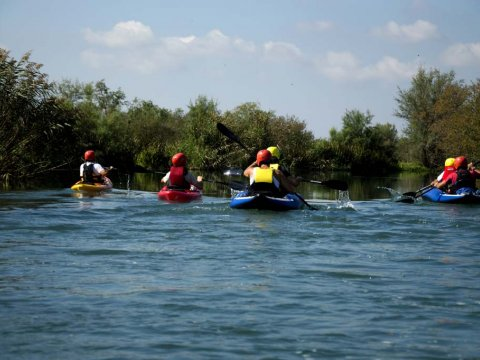 Louros River, Κayaking – Βirdwatching into the wild greece preveza.jpg3