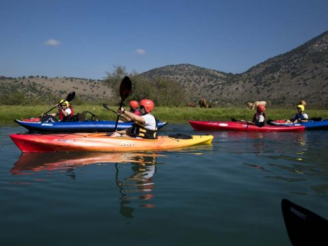 Louros River, Κayaking – Βirdwatching into the wild greece preveza.jpg1