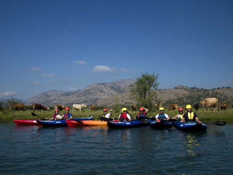 Louros River, Κayaking – Βirdwatching into the wild greece preveza