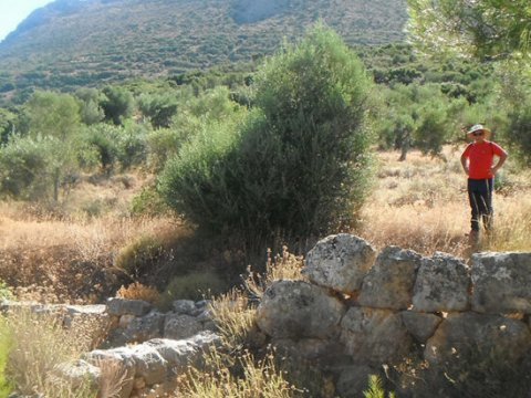 Mycenae Hiking The Valley of Souls greece creco paths.jpg6