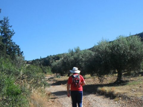 Mycenae Hiking The Valley of Souls greece creco paths.jpg4