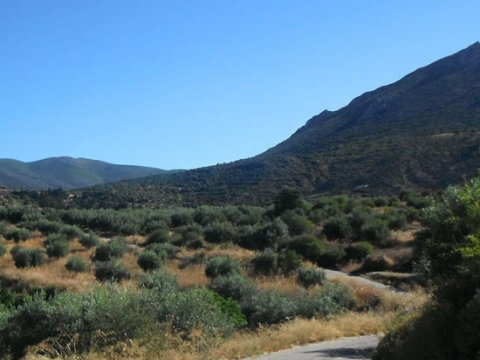 Mycenae Hiking The Valley of Souls greece creco paths.jpg2