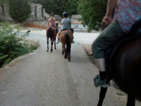 Horse Riding Kefalonia Countryside ιππασια αλογα Greece.jpg3