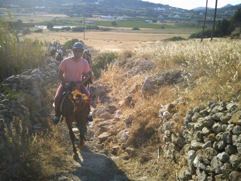 Horse Riding Tour Paros Kokou Greece ιππασια αλογα sunset.jpg6
