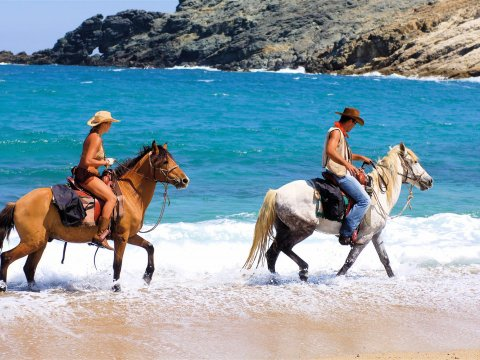 Mykonos Horse Riding Tour Greece Ιππασια Αλογα.jpg8