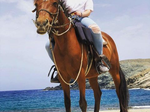 Mykonos Horse Riding Tour Greece Ιππασια Αλογα.jpg6
