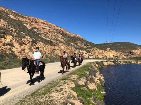 Mykonos Horse Riding Tour Greece Ιππασια Αλογα.jpg5