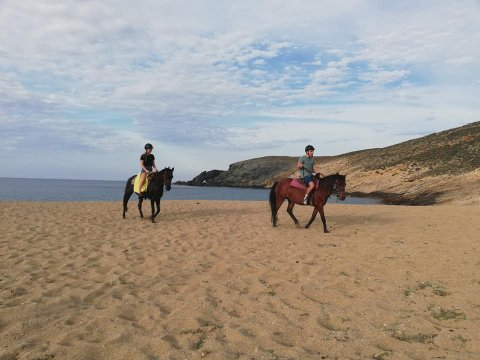 Mykonos Horse Riding Tour Greece Ιππασια Αλογα.jpg4