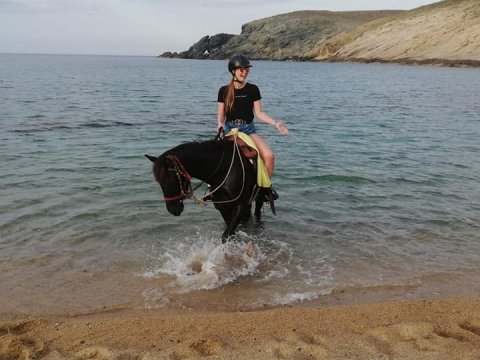 Mykonos Horse Riding Tour Greece Ιππασια Αλογα.jpg3