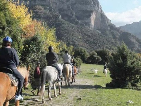 Horse Riding at Papigo
