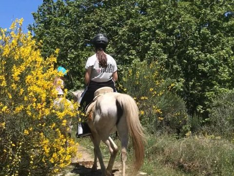 horse-riding-center-pelion-greece-ιππασια-αλογα-πηλιο.jpg9