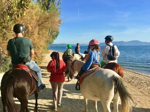 horse-riding-center-pelion-greece-ιππασια-αλογα-πηλιο.jpg4