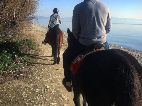 horse-riding-center-pelion-greece-ιππασια-αλογα-πηλιο.jpg3