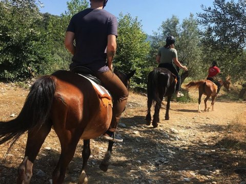 horse-riding-center-pelion-greece-ιππασια-αλογα-πηλιο.jpg2