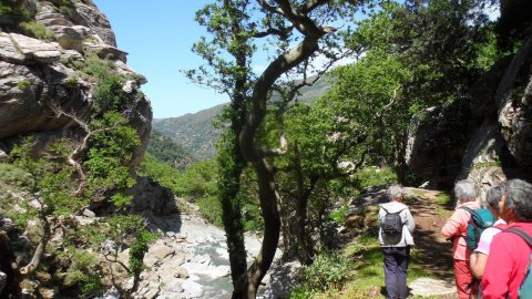 Hiking Evia at Dimosaris Gorge