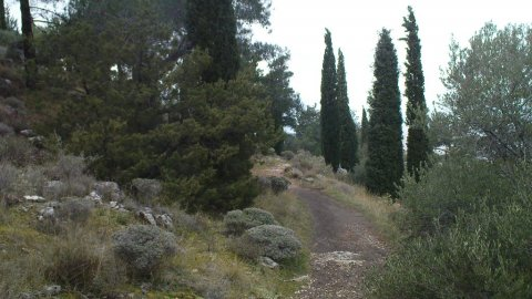 Hiking Mountain Hymettos Athens